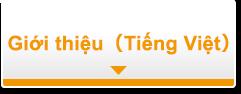 giới thiệu(Việt nam)